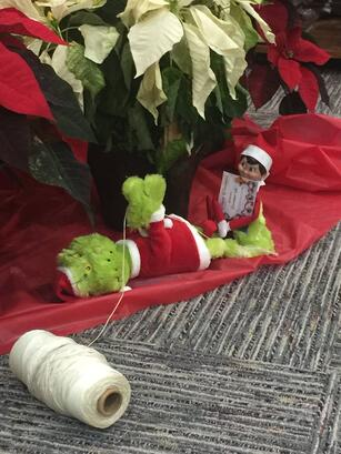 Foiled! Buddy the Elf has captured the Grinch!.jpg